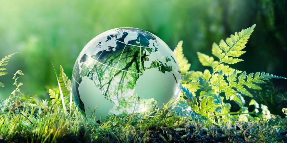 globe and grass